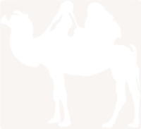 unbridged layer 1 of stencil of Camel