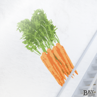 painted stencil art of Carrots