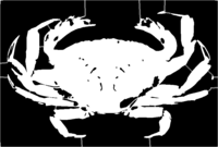 bridged layer 1 of stencil of Crab