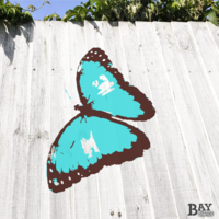 painted stencil art of Blue Morpho Butterfly