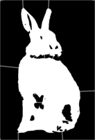 bridged layer 1 of stencil of Rabbit