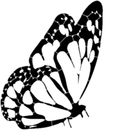 bridged layer 3 of stencil of Butterfly