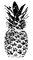 bridged layer 2 of stencil of Pineapple