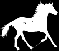 bridged layer 1 of stencil of Horse
