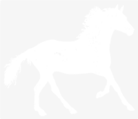 unbridged layer 1 of stencil of Horse