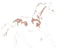 unbridged layer 2 of stencil of Horse