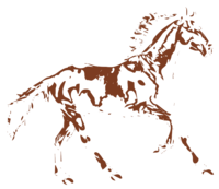 unbridged layer 4 of stencil of Horse