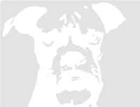 unbridged layer 1 of stencil of Boxer