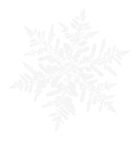 unbridged layer 1 of stencil of Snowflake