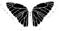 bridged layer 2 of stencil of Butterfly