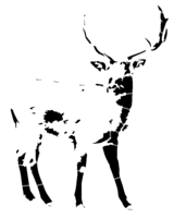 bridged layer 2 of stencil of Deer