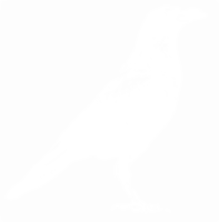 unbridged layer 1 of stencil of Crow