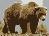 stencil of Grizzly Bear