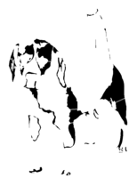 bridged layer 3 of stencil of Beagle