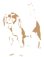 unbridged layer 3 of stencil of Beagle