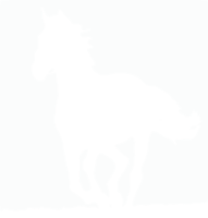 unbridged layer 1 of stencil of Black Horse