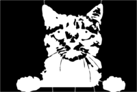 bridged layer 1 of stencil of Cat