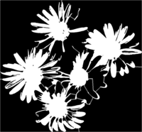 bridged layer 1 of stencil of Daisies