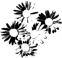 bridged layer 2 of stencil of Daisies