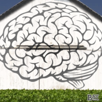 painted stencil art of Brain