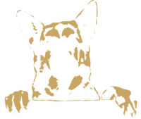 unbridged layer 2 of stencil of German Shepherd