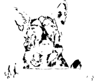bridged layer 3 of stencil of German Shepherd