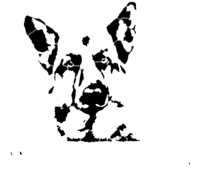 bridged layer 5 of stencil of German Shepherd