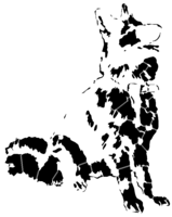 bridged layer 2 of stencil of German Shepherd
