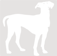 unbridged layer 1 of stencil of Doberman