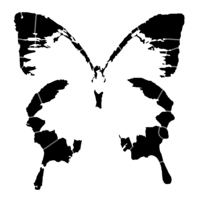 bridged layer 4 of stencil of Ulysses Butterfly