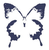 unbridged layer 4 of stencil of Ulysses Butterfly