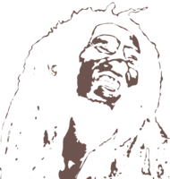 unbridged layer 3 of stencil of Bob Marley