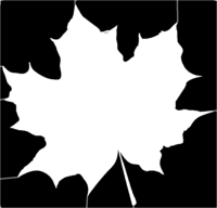 bridged layer 1 of stencil of Maple Leaf