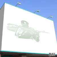 simulated stencil painting of Sharpshooter